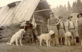 Photo: r. 1955