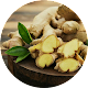 Heath Benefits & Uses of Ginger for PC-Windows 7,8,10 and Mac
