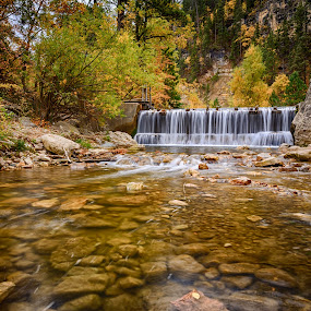 Canyon Waterfall by Kendra Perry Koski - Landscapes Waterscapes ( water, orange, spearfish, wood duck, fish, waterfall, 2016, south dakota, us, yellow, leaves, red, autumn, fall, creek, spearfish canyon, dakota winds photography,  )