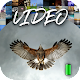 Video Wallpaper 2K Android apk
