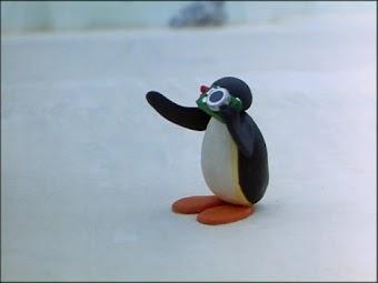 Pingu & the Camera
