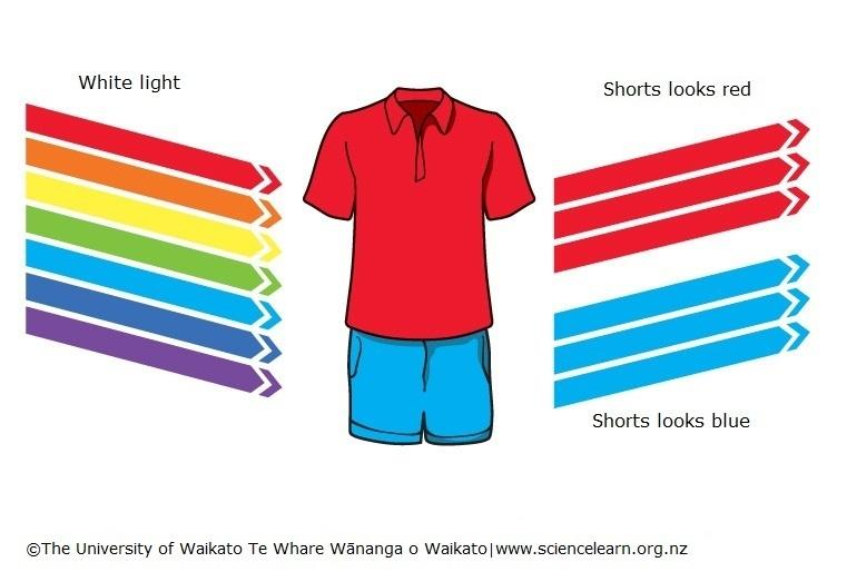 C:\Users\smart\Desktop\UOW_Red-shirt-and-blue-shorts_Science_Learning_Hub.jpg