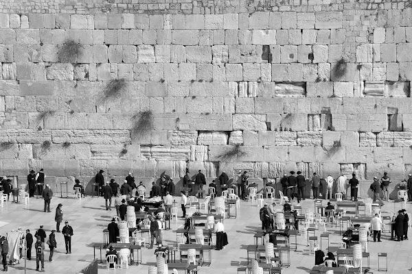 Gerusalemme di alessandro54