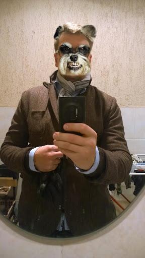 動物探測器 - 搞笑面具