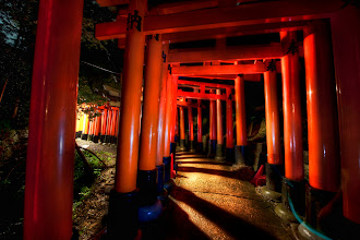 Photo: The gates of Kyoto -from the blog www.stuckincustoms.com