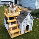Dog House Design Ideas APK