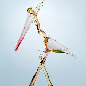 Crane by Salahudin Damar Jaya - Abstract Water Drops & Splashes