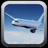 Aircraft driving simulator 3D