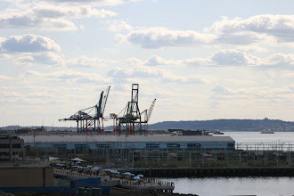 Photo: Cranes on the Red Hook waterfront.