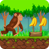 Jungle Monkey Adventures