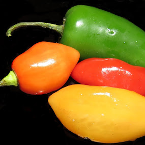 Chillies by Karen Noble - Food & Drink Fruits & Vegetables (  )