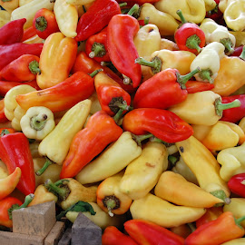 Red & White peppers by Dusty Greggor - Food & Drink Ingredients (  )