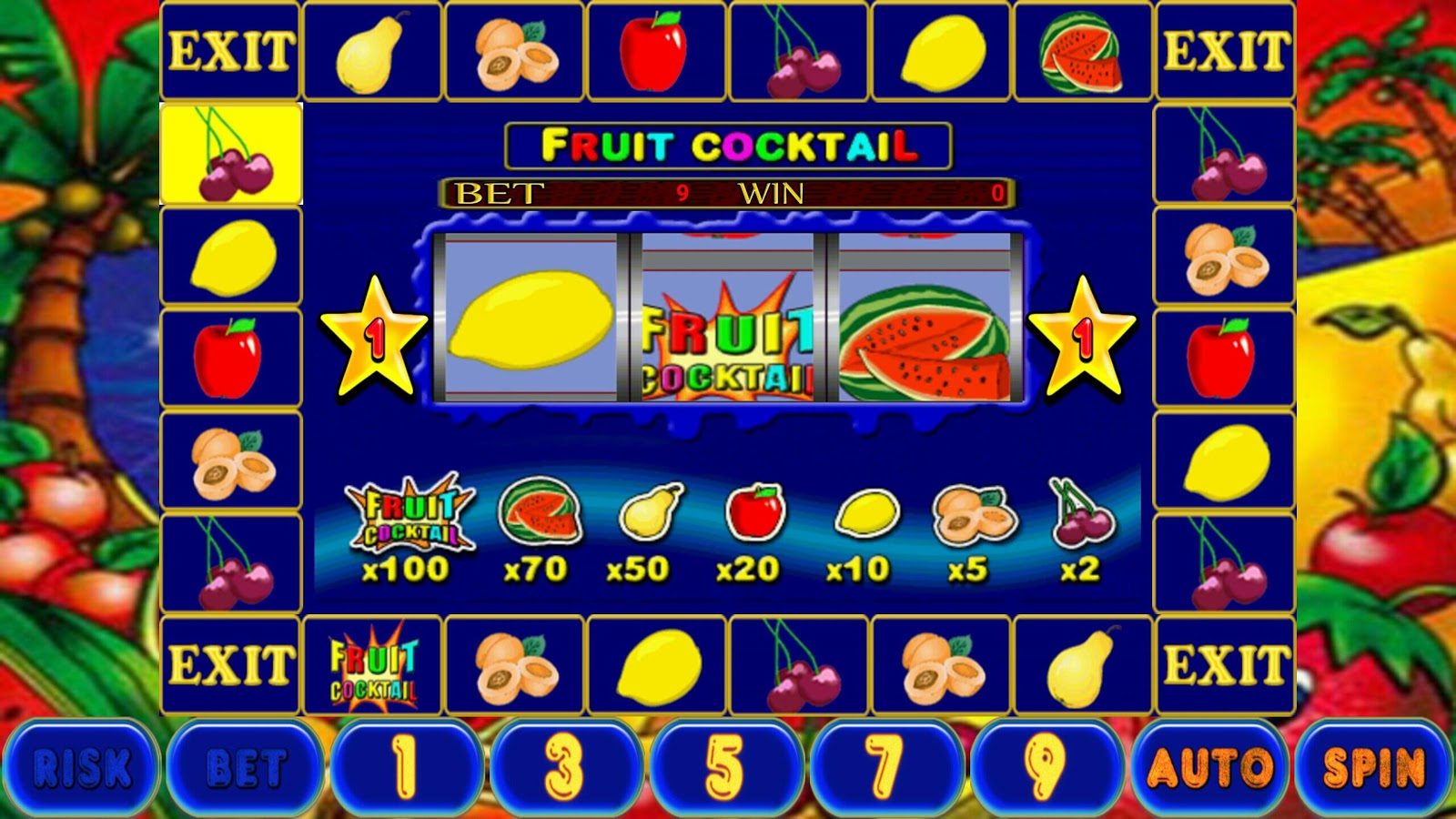 Fruit Cocktail- screenshot
