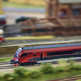 Like real things by Jiri Cetkovsky - Artistic Objects Toys ( panning, toy, railway, modell, train )