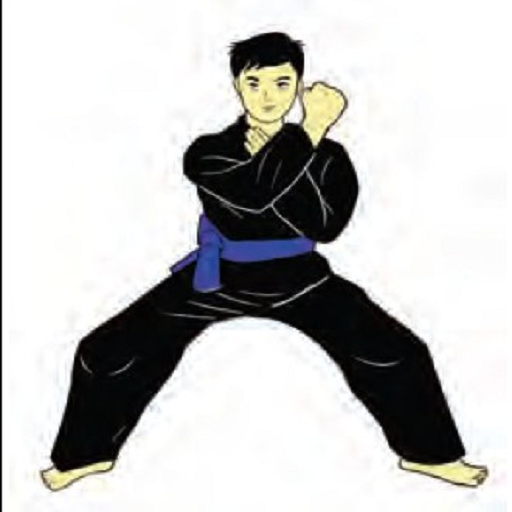 learn martial arts 2.0 1