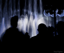 Photo: World of Color in Blue