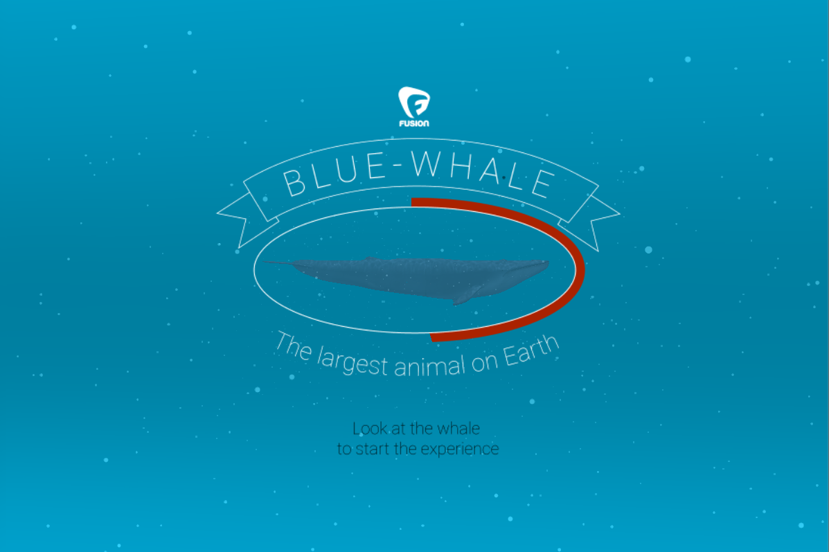Blue whale VR- screenshot
