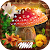Hidden Objects Fantasy Games Puzzle Adventure file APK Free for PC, smart TV Download