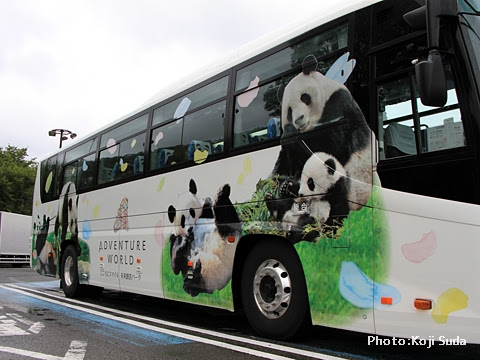 明光バス「パンダ白浜エクスプレス181号」 側面 右側