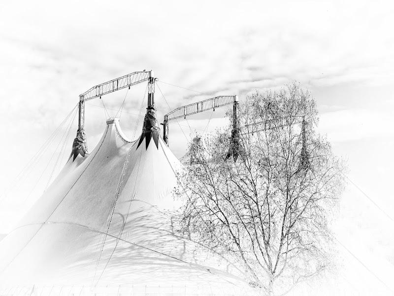 Circus dream... di LuXi