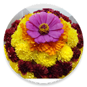 Bathukamma Telugu Songs