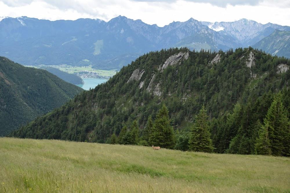 Два дня на знакомство с озерами Австрии