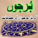 Burjon Ka Advice Pediya Urdu icon