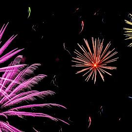 Colored fire by Ana Paula Filipe - Abstract Fire & Fireworks ( sky, color, night, abstract, fireworks )