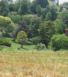 terrain à Lacroix-Falgarde (31)