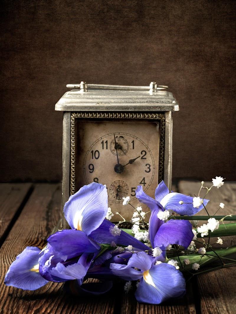 Che giorno è, che anno è... di Sergio Locatelli