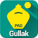 Gullak - Expense Manager Pro