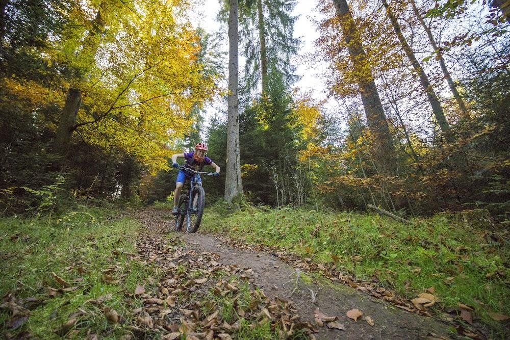 Ein Mountainbiker genießt die Abfahrt auf einem Trail im Wald