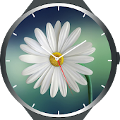 Flowers Watch Faces