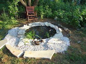 Photo: kövek és növények költöztek a tó köré másnap https://www.facebook.com/reginakertgodollo