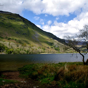 Snowdonia's light of life. by Yvonne Payne - Landscapes Mountains & Hills ( wales. snowdonia., mountain, landscape )