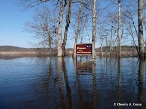 Photo: Flood tour, 4.3.10