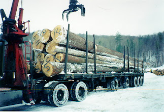 Photo: The logs were cut in January 1994, 18 months before delivery so that they would dry properly. The logs were so heavy that it took a special truck with a float bed to deliver them.