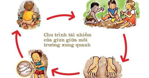 Nguyen nhan nhiem trung giun san o tre nho va cach phong ngua - Hinh 2
