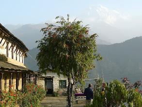Photo: ein letzter Blick auf das Annapurna Massiv.