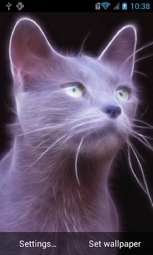Silver cat Live Wallpaper