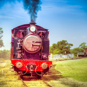 The Blues Train by Tony Buckley - Transportation Trains ( rail, train, railway. australia, steam )