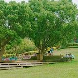 綠芳園咖啡庭園餐廳(竹北旗艦店)