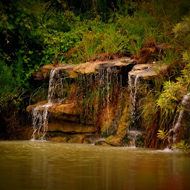 Waterfall by Brenda Shoemake - Landscapes Waterscapes
