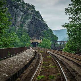 Mountain Railway by Lee Davenport - Transportation Railway Tracks (  )