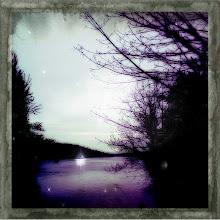 Photo: Lake Washington on the way home