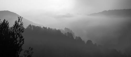 Photo: A misty day