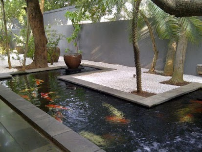Fish pond design android apps on google play for Pond design app