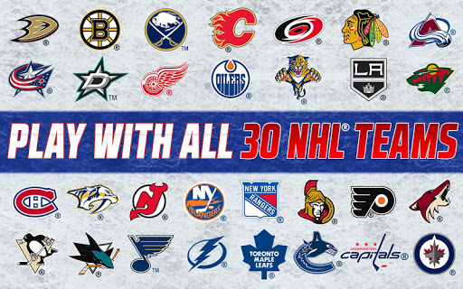 Big Win NHL Hockey screenshot 4