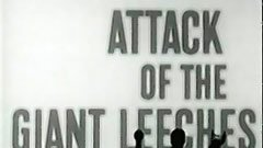 Attack of the Giant Leeches thumbnail