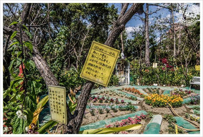 大東溼地公園陶園很有意境的一段話